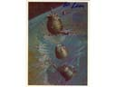 # ma628 A.Sokolov artwork card Return From Space Miss