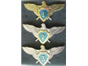 # aw220 Ukraine Air Force fighter pilot class wings