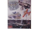 # avpost113 M.Petrovskiy aircraft of WWII artoworks on poster