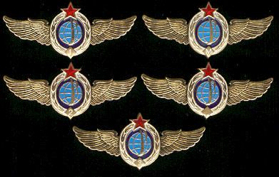 # sw105 Space Forces (Military Space Divisions) wings