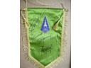 # pnt100 Vostok-3/4 and ASTP cosmonauts signed pennant
